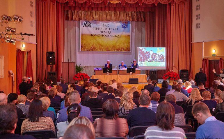Коровы Ленинградской области дали 620 тонн молока