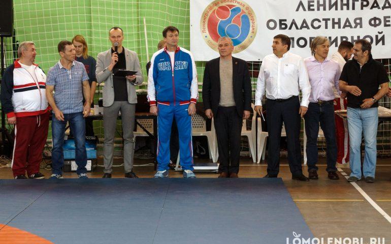 Турнир по борьбе Ломоносовский район