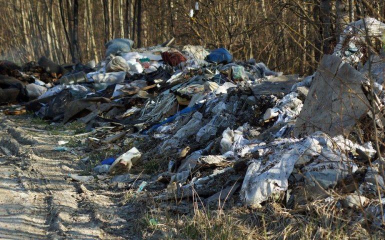 Несанкционированные свалки в Ломоносовском районе